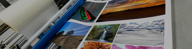 Designa and Print